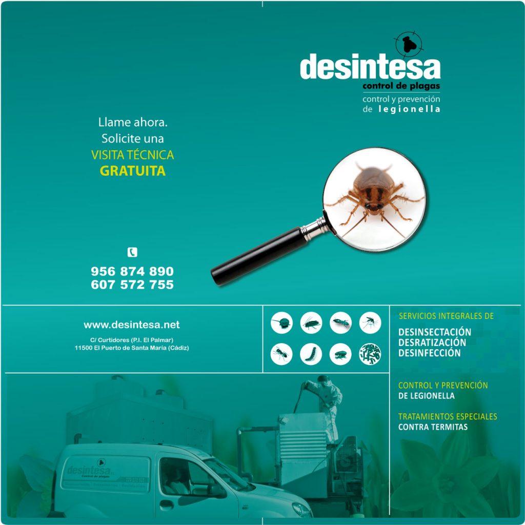 Diseño de folletos. Económicos en Cádiz